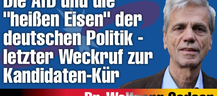 2021 06 15 Die AfD und die heissen Eisen der deutschen Politik letzter Weckruf zur Kandidaten Kuer